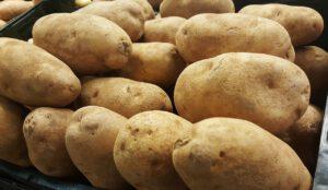 Russet Potatoes